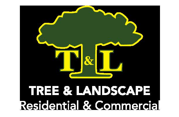 T&L_logo_green